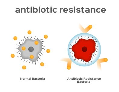 Bacteria are Becoming More And More Resistant To Antibotics